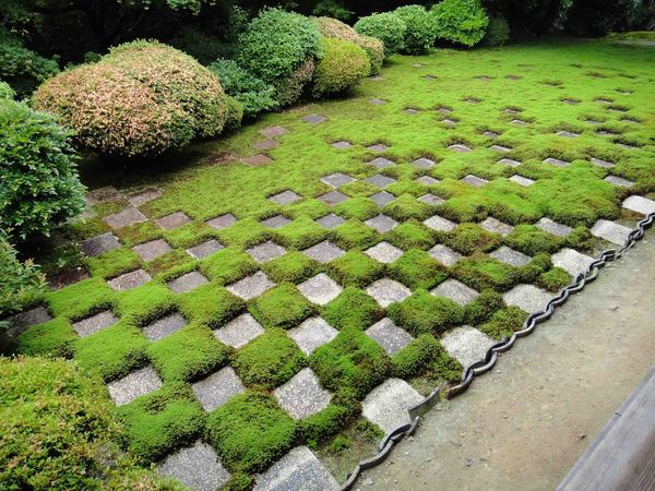 Tofuku-ji Temple in Kyoto, Travel to Higashiyama-ku