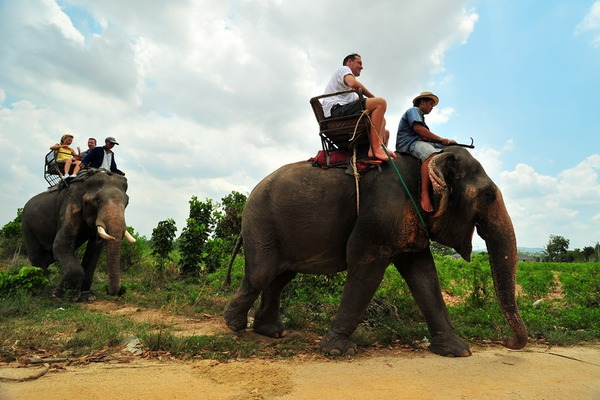 Pattaya Elephant village, Travel to Chon Buri